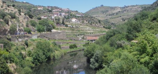 la vallée de douro