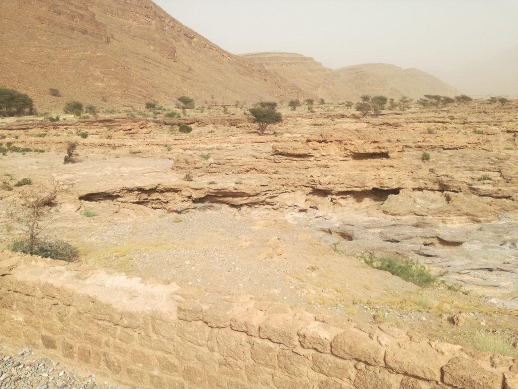 le desert et son oued asséché