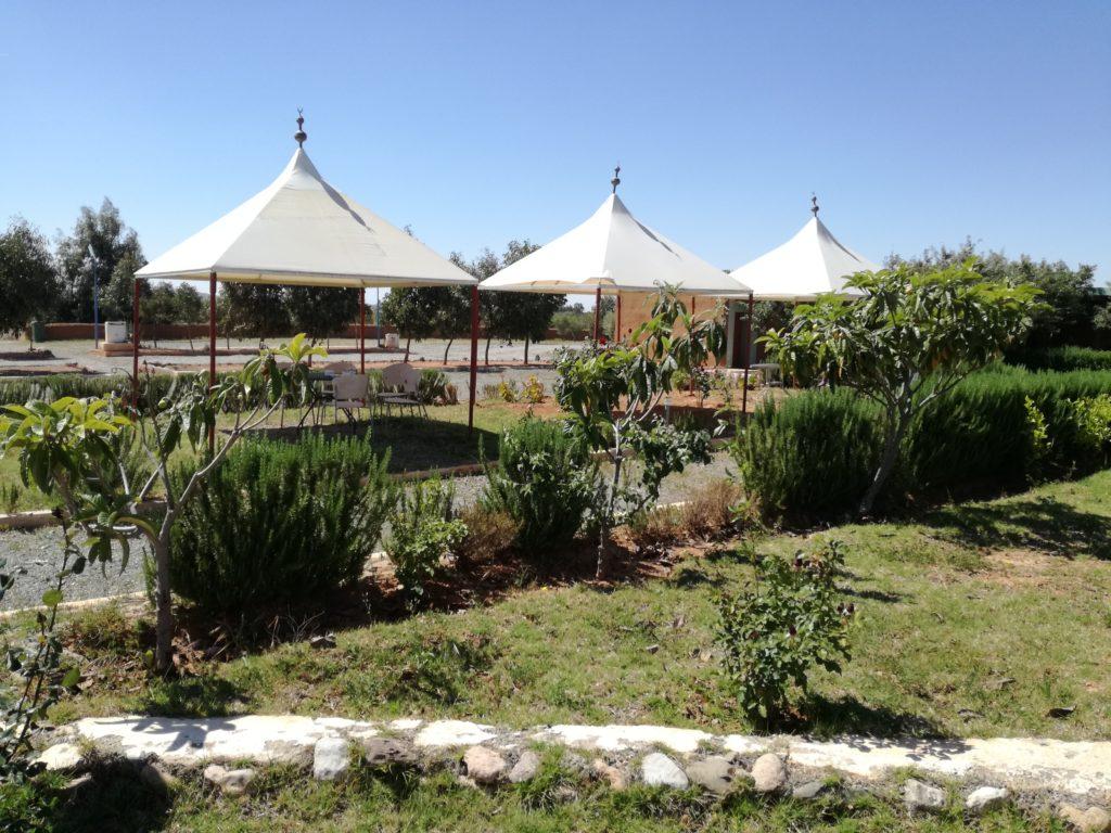 tables ombragées de Benyakoub