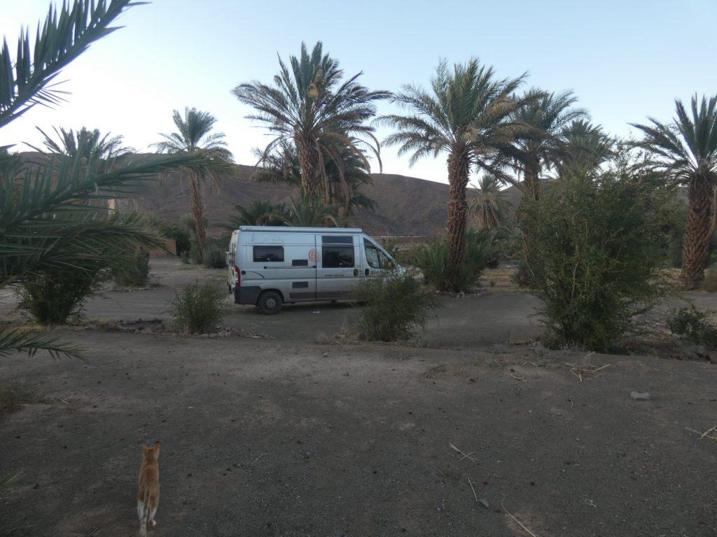 Camping Tansift a Agdz