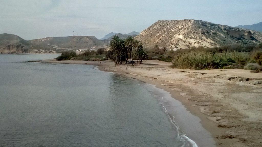 Playa de las Palmera